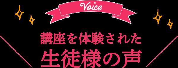 voice-mini_01